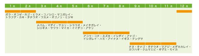 魚の旬カレンダー